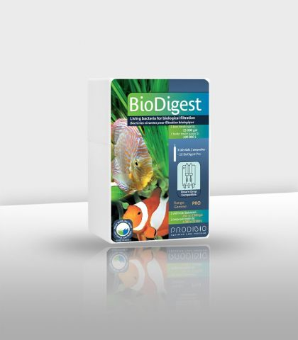 Biodigest Pro 10 ampoules