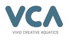 Vivid Creative Aquatics