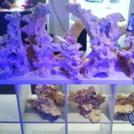 De quoi faire vote nouveau reefscape de votre récif. . #aquaroche #aquastudionice #aquariumpartners #elos #neoquarium #neoquariumonline