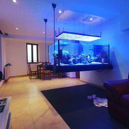 Voilà un bac qui fait rêver plus d'un aquariophiles du monde entier ! C'est toujours beau un bac elos surtout un Vrai XL en 80 de large ..  bravo @sclouaire .!!!  #elosalwayscrazy #neoquarium #toujours2pasdavancesurlesautres