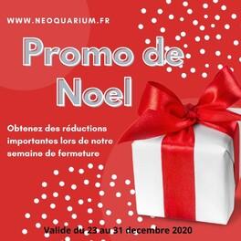 www.neoquarium.fr pour une promotion de noel ,  vous pour utiliser vos étrennes pour faire plaisir a votre aquarium , si vous avez rater les dernieres promo .  #noelonvousdonnes10 #Offresdenoel #neoquarium