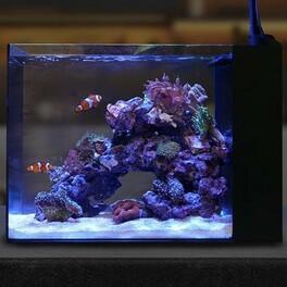les waterbox Peninsula 25 90 lt disponible a la vente  #waterbox #peninsula #nanoreef #neoquarium